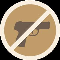 Anti-Gun Icon